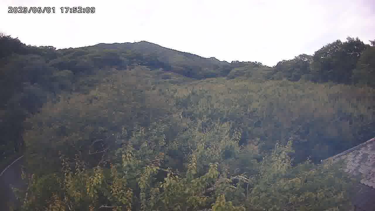 カメラ 月 山 ライブ